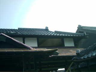 IMAG0154.JPG